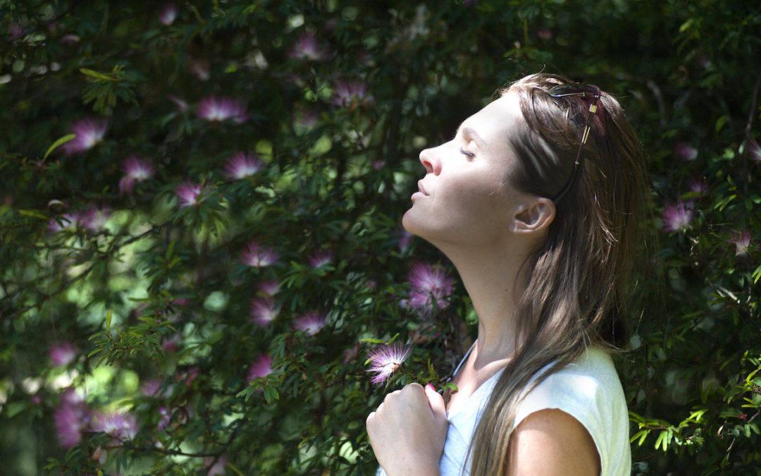 ¿Cuándo perdonar? – Vive Feliz con UCDM